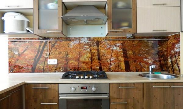 кухонный фартук из стекла фото