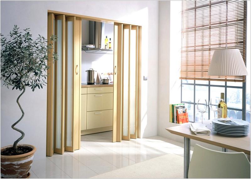 дверь гармошка на кухню фото